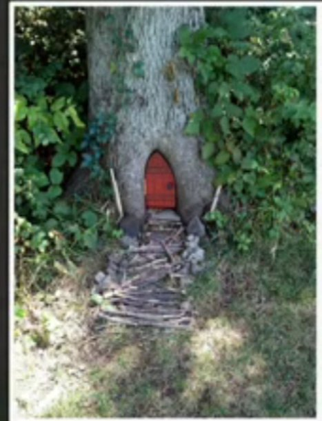 Gnome Homes Mysteriously Appear In Park | Strange days indeed... | Scoop.it