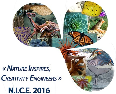 N.I.C.E. 2016&nbsp;<br/><br/>The 3rd International Conference on<br/>Bioinspired and Biobased Chemistry &amp; Materials &nbsp;&nbsp; <br/><br/>October 16-19, 2016<br/>Nice, France | ECPM Strasbourg | Scoop.it