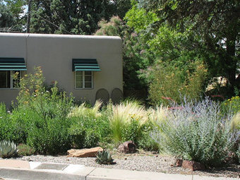 Xeriscaping and the Principles of Saving Water: Organic Gardening | 100 Acre Wood | Scoop.it