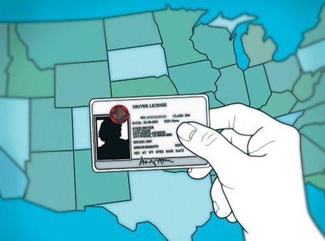 Licenses From These 5 States Won't Be Valid to Board a Flight | Xposing Government Corruption in all it's forms | Scoop.it