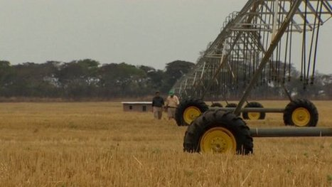 BBC: Can industrialised farming make Africa feed the world? | Regional Geography | Scoop.it