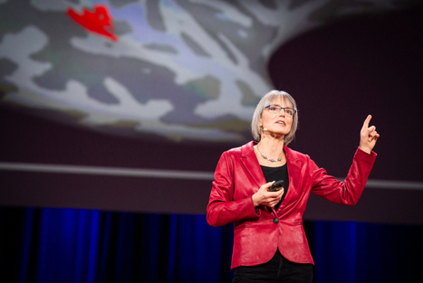 The brain is a Swiss Army Knife: Nancy Kanwisher at TED2014 | TED Blog | santé | Scoop.it