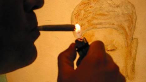 Kamer wil softdrugs slimmer reguleren; VVD tegen | Drugsbeleid | Scoop.it
