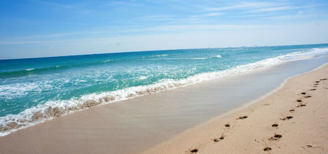 Fort Lauderdale's Best Beaches | Travel | Scoop.it
