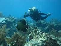 Don't Be Afraid To Travel! Follow This Recommendation And You'll Have A Nice Time. | Ultimate Dive and Travel | Scoop.it
