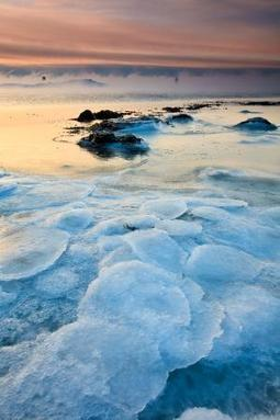 Earth's first life may have sprung up in ice - life - 01 November 2013 - New Scientist | Science and Nature | Scoop.it