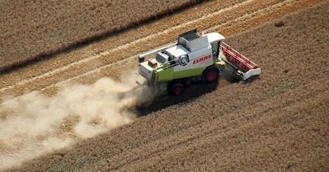 Agrar: Experten warnen vor Folgen des Klimawandels für die Bauern - Niedersachsen | FilFallt | Scoop.it