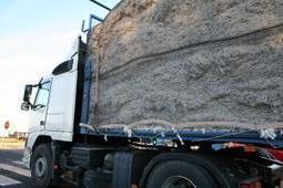 La ayuda específica al algodón cae hasta los 825,22 euros por hectárea | Asaja Sevilla | SySO en Construcciones | Scoop.it