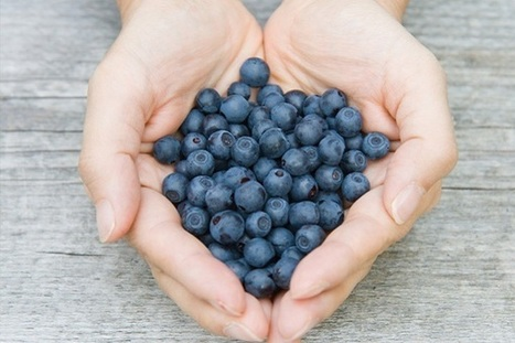THE 5 MOST AMAZING BLUE SUPERFOODS - News - Bubblews | Useful Health Information | Scoop.it