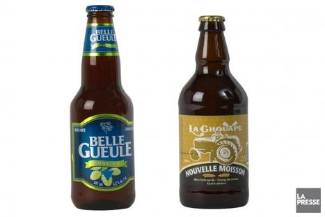 Quand houblon et alcool font bon ménage | Catherine Schlager | Bières | Rhums et Bières | Scoop.it