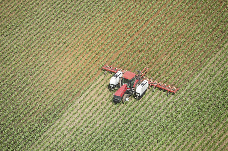 80 Teenage Farm Workers Sent To Hospital After Chemical Spray Accident | Food and Agriculture | Scoop.it