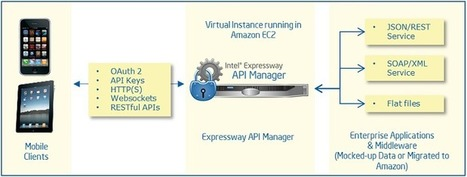 Instant API Management with Intel and Amazon - Application Security | Api management by jnbs | Scoop.it