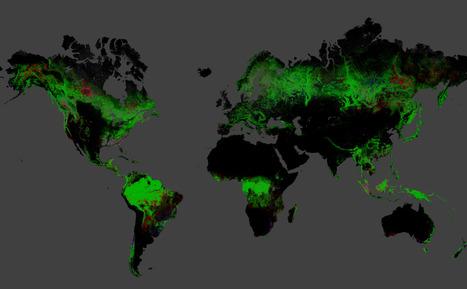 Global Forest Change | Google Crisis Map | Remote Sensing | Scoop.it