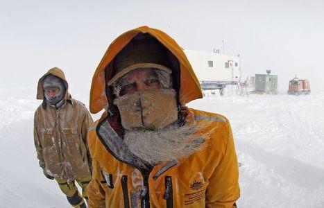 Year 6 | Antarctica: environmental impacts | Scoop.it