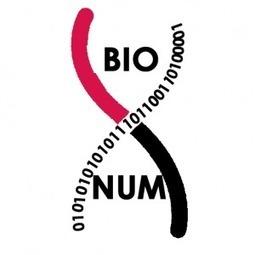 Veille de blog de la semaine du 11/04 au 17/04/2016   C@fé des Sciences   Scoop.it