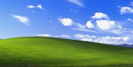 L'affascinante storia della foto dello sfondo classico di Windows XP | Web Marketing | Scoop.it