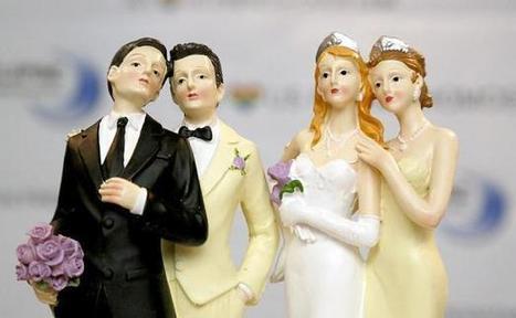 Treize maires anti mariage pour tous saisissent la CEDH | Gender | Scoop.it