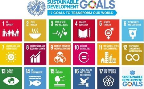 Sustainable Development Goals launch in 2016 | Changer la société pour éliminer la pauvreté | Scoop.it