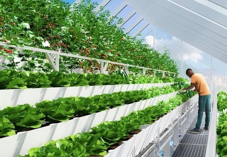 Edenworks Is Building The Future Of Food On Urban Rooftops | Vertical Farm - Food Factory | Scoop.it