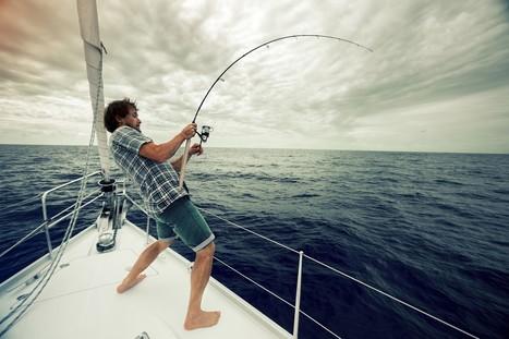 Hire an Islamorada Fishing Charter to Up Your Odds of Bagging Bonitos   Islamorada Fishing Source   Scoop.it