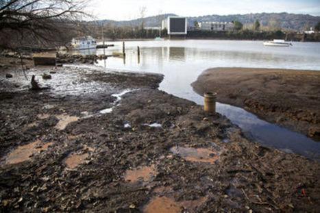 Behind closed doors, feds to unveil draft of Portland Harbor cleanup plan - OregonLive.com | Sediment Investigation & Remediation | Scoop.it