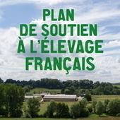 Fruits et légumes : Des aides à la trésorerie à demander avant le 30 septembre | Agriculture en Dordogne | Scoop.it