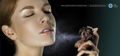 60 publicités chocs contre le mauvais traitement des animaux | Protection animale | Scoop.it