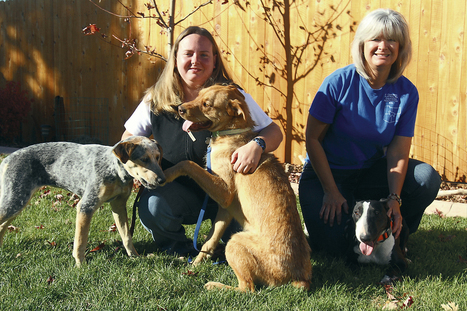 Farmington animal rescue worker seeks help with mission - Farmington Daily Times   Life Simplified   Scoop.it