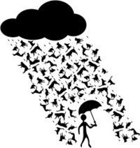 I'm (OLDs) MOOCing in the rain… #oldsmooc_w2 | João Pedro Bourbon's OLDS MOOC ePortfolio | Scoop.it