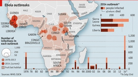 Ebola Cases Are Falling In West Africa | Africa | Scoop.it
