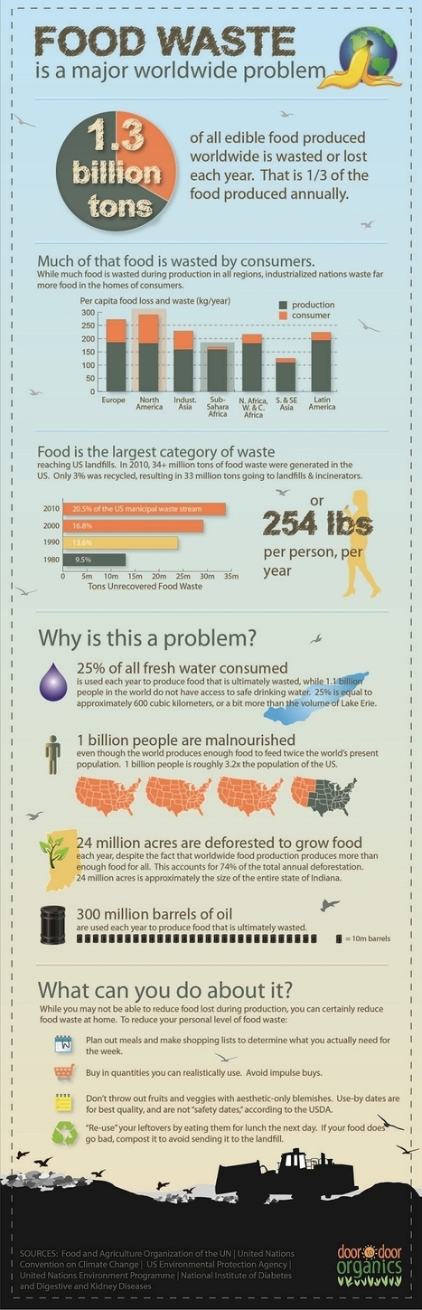 Food Waste | Infographics for English class | Scoop.it