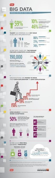 CIO Infographic: Big Data Through the Eyes of Your IT Staff | BigData NoSql and Data Stuff | Scoop.it
