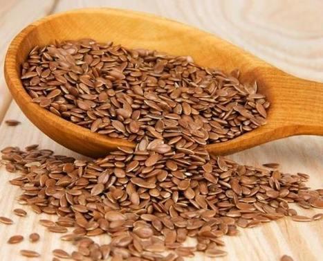 Vi piacciono i semi di lino? Buoni e pieni di salute | Il mio amico pediatra | Scoop.it