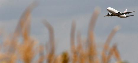 Boeing is banking on biofuel development - MyNorthwest.com   Boeing   Scoop.it
