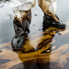 Oil Spills and Environmental Damage | The Energy Collective | Sustain Our Earth | Scoop.it
