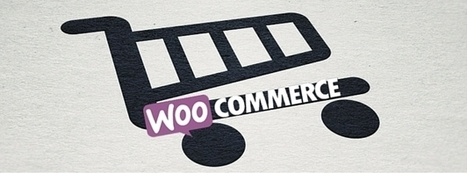 WooCommerce Development Company   Thrive Internet Marketing   thriveideas   Scoop.it