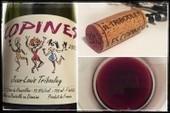 Domaine Jean-Louis Tribouley – Les Copines 2013 AOC Côtes du Roussillon - Into the Wine   Into the Wine   Scoop.it