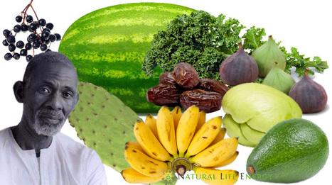 Dr. Sebi Nutritional Guide - Mucus Reducing Alkaline Diet | Soul & Spirituality | Scoop.it