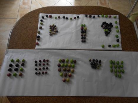 Algumas Variedades de Azeitonas e suas utilidades para azeite e azeitona de mesa | olive table on Brazil | Scoop.it