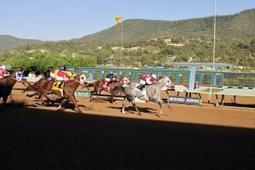 Ruidoso Downs: Executive Brass Wins the 2012 Ruidoso Derby