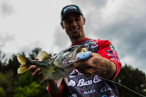 Late Spring Bass | Cranking for Post-Spawners | Fishing Industry News | Scoop.it