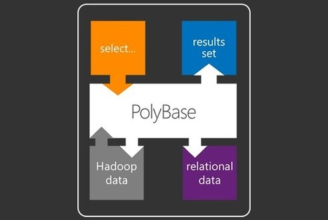 PolyBase | Microsoft SQL Server 2012 | Innovatie Antenne | Scoop.it