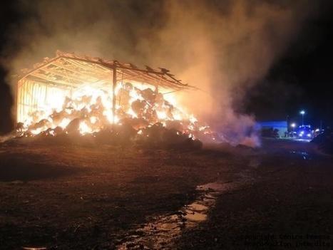 Coussay-les-Bois. Un violent incendie ravage le stock de fourrage d'une exploitation agricole | ChâtelleraultActu | Scoop.it