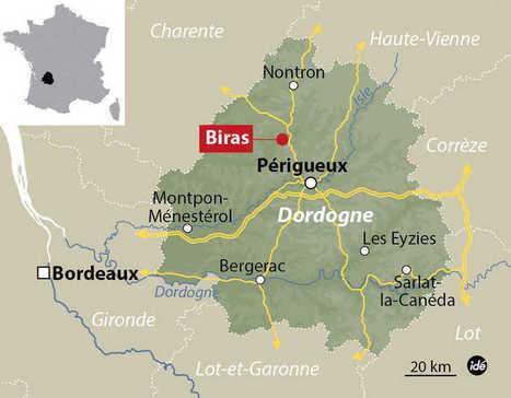 Dordogne : un cas de grippe aviaire H5N1 détecté dans une basse-cour | Agriculture en Dordogne | Scoop.it