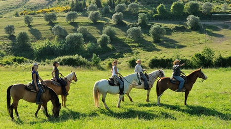 Equestrian Travel Articles - Horse Riding the Chianti Trails in Tuscany, Italy - Equitrekking | Horse Care | Scoop.it