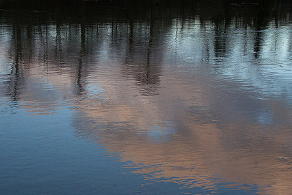 Reflets sur Marne | Ca m'interpelle... | Scoop.it