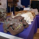 University runs crime and forensics open day | UoP News | Forensics, Criminal Justice, and Psychology | Scoop.it