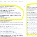 The Worlds Largest Ad Agency Disguised As A Search Engine | Make Money Online Reality | Scoop.it