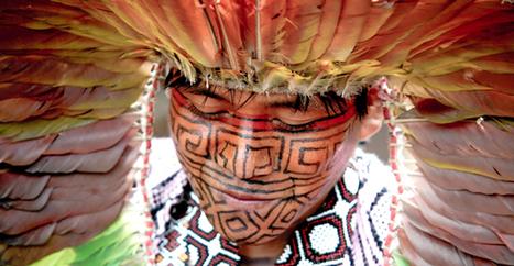 World Ayahuasca Conference 2016 | Rio Branco awaits you | ICEERS Ethnobotanical News | Scoop.it