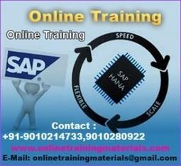 SAP HANA online training institute in Ameerpet, SAP HANA Online Training Institute from Hyderabad India.   Online Training Materials   Online Training   Scoop.it